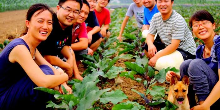 sharedharvest