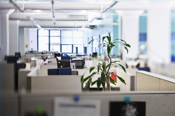 Office Space: Everything New Business Owners Might Need for Their Startup