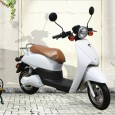 Spring is coming and riding your own e-bike (电动车 – diàn dòng chē) could make your life easier: China is the country of e-bike: more than 90 percent of the world's e-bikes […]