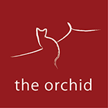 The-Orchid-red-SQUARE-PRINT-small