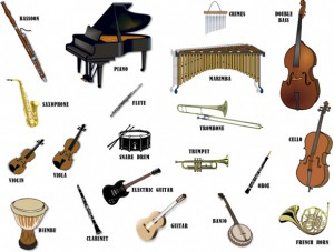 Musical-Instruments-The-Bird-Feed-1024x790 copy