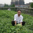 Urban farming in Beijing? Considering the pollution and the limited space in the city, this sounds not only surrealistic but also questionable from health / food safety point of view, […]
