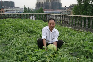 watermelons-on-rroftop-in-china