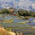 Nous avons fait un voyage en voituredans le Yunnan et jusque dans le Xishuangbanna ;nous partageons notre expérience d'un fou voyage de 5 jours: Kunming – Yuanyang – Mengla […]