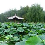 Liuyin-PArk
