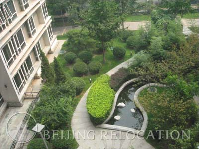 Serviced Apartment in Sihui