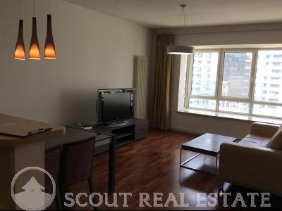 1 Bd in Central Park